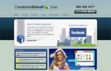 Face Book Licious
