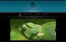 WP Chameleon