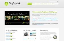 Tag Expert