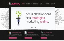 I D Agency
