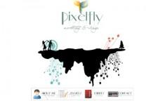 Pixelfly Design