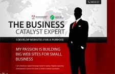 Adobe Business Catalyst Experts